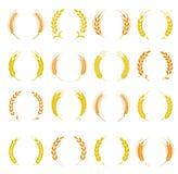 Veteörasymboler för logodesign Arkivfoto