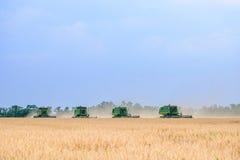 Vete för fyra John Deere Combine Harvesters Harvesting i fältet royaltyfria bilder