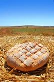 vete för sugrör för brödbulle guld- runt Arkivbild