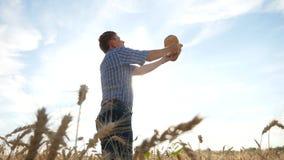 vete för tid för agriculturistfältskörd lyckat livsstil arkivfilmer