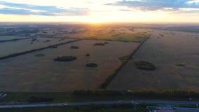 Vetefält Härligt landskap från en höjd i solnedgångtid Foto från höjden Royaltyfri Bild