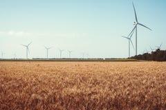 Vetefält och ecomakt, vindturbiner Fotografering för Bildbyråer