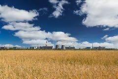Vetefält och fabrik Fotografering för Bildbyråer