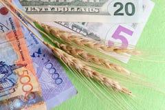 Vetegrov spik bredvid sedlar av US dollar och tengen av Kasakhstan Begreppet av kostnaden av korn, försäljningen och köpet av skö royaltyfria bilder