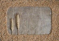 Vetekorn i form av en ram på säckväv Arkivfoton