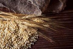 Vetekorn, mjöl och bröd Arkivfoto