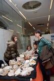 vetenskap serbia för 13 festival Royaltyfria Bilder