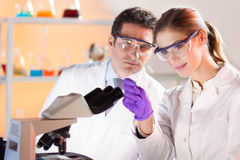 Vetenskaperna om olika organismers beskaffenhetforskare. Arkivfoton