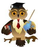vetenskaplig owl Royaltyfri Foto