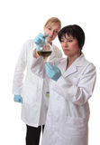 vetenskapliga arbetare för laboratorium Arkivfoton