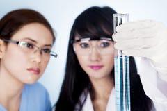 Vetenskapligt forskninglag som ser den klara lösningen Arkivfoto