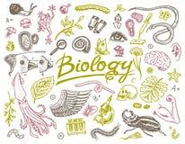 Vetenskapligt laboratorium i biologi Symbolsuppsättning av biokemiforskning Organismmolekylar för bosatta varelser Medicin in royaltyfri illustrationer