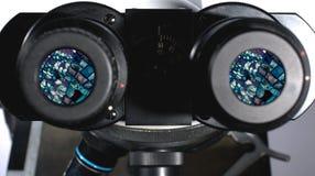 vetenskapligt mikroskop Royaltyfri Bild