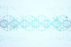 Vetenskapsmall, DNAmolekylbakgrund royaltyfri illustrationer