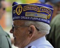 Veteran bär den dekorativa hatten med lappar royaltyfri foto