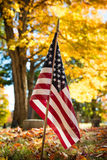 Veteran flag in autumn cemetery. American veteran flag in autumn cemetery Royalty Free Stock Images