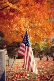 Veteran flag in autumn cemetery Stock Image
