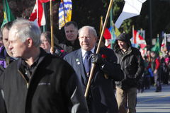 Veteran in Remembrance Day Parade Stock Photography