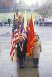 Veteran's Day Ceremony Royalty Free Stock Photos