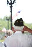 Veteran`s Salute Stock Images