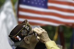 Veteran`s Saluting. At a ceremony Royalty Free Stock Images