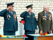 Veteranengruß Lizenzfreie Stockbilder