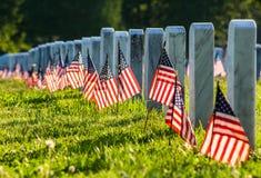 Veterankyrkogård med flaggor royaltyfri fotografi