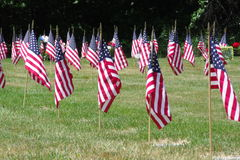 Veterankyrkogårdflaggor Royaltyfri Foto