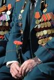 Veterano Fotografia Stock
