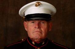 Veterano marino Fotografia Stock