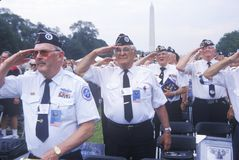 Veteranos da Guerra da Coreia que saudam, aniversário da Guerra da Coreia 50th, Washington, C C Fotos de Stock