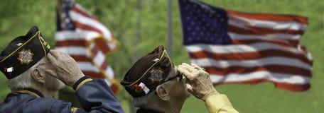 Veteranos que saudam em uma cerimônia Fotos de Stock Royalty Free