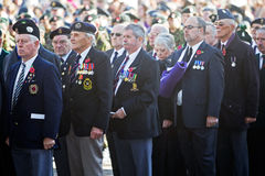 Veterans. AYLESBURY, UK - NOVEMBER 11: Ex British servicemen stand to attention during the 2012 Armistice ceremony in Aylesbury's market square on November 11 Stock Photography