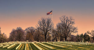 Veterans. Area of a cemetery stock photo