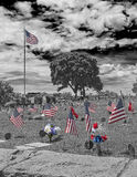 Veterans cemetery. Black and white with red white and blue spot colors Royalty Free Stock Image
