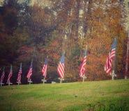Veterans dag tackar royaltyfri bild