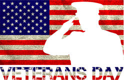 Free Veterans Day Sign Royalty Free Stock Image - 61528816