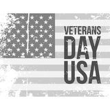 Veterans Day USA grunge Flag with Text. Vector Illustration Stock Photography