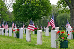Veterans graves with American flags Stock Photos