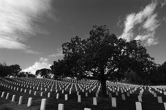 Veterans Memorial. Veterans cemetary royalty free stock images