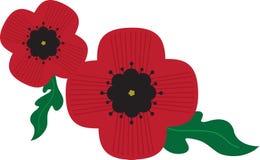 Veterans Poppies Royalty Free Stock Photo