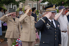 Veterans salute stock photography