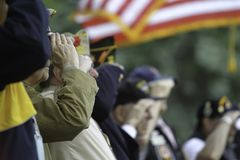 Veterans Saluting Royalty Free Stock Images