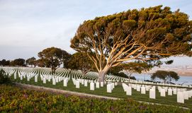 Veterans tribute. Rows of geometrically placed headstones honor the service of Americas veterans in Fort Rosecrans National Cemetary royalty free stock photos