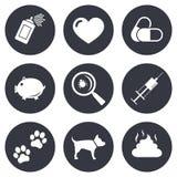 Veterinário, ícones dos animais de estimação Patas do cão, sinais da seringa ilustração stock