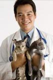 Veterinário asiático Imagens de Stock