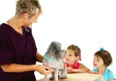 Veterinário, cão e crianças fotografia de stock