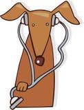Veterinário do cão Fotos de Stock Royalty Free