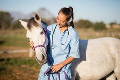 Veterinário fêmea que afaga o cavalo fotografia de stock royalty free