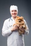 Veterinário masculino de sorriso com o phonendoscope que guarda o cão pomeranian bonito foto de stock